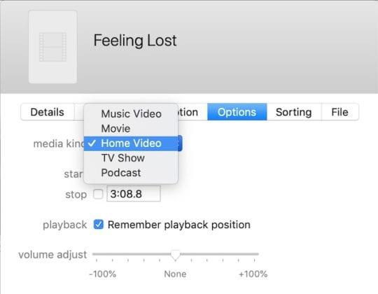 Options tab in iTunes Info window