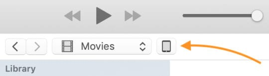 iPad icon in iTunes