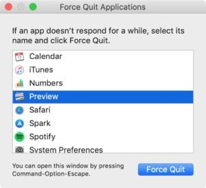 Force Quit window on macOS.