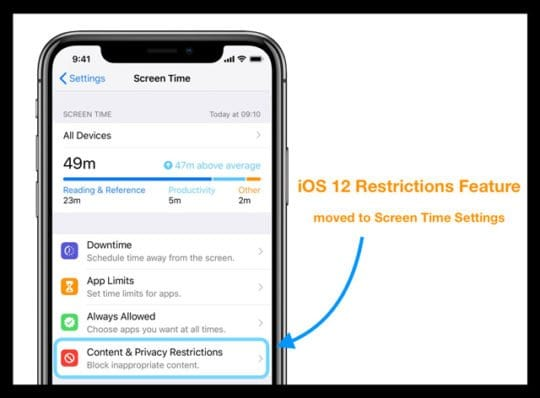 Enabling Restrictions on iPad