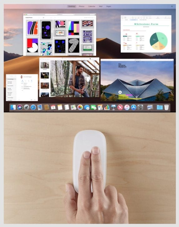 Magic Mouse gesture preview