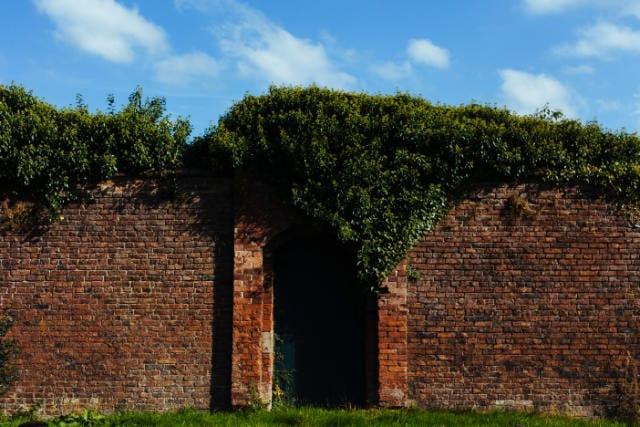 Tall brick wall surrounding a garden, representing Apple's garden-wall approach to software