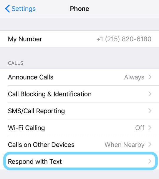 iPhone Setting for Respond with Text