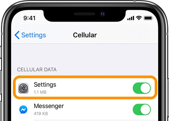 toggle on cellular data for the Settings app on iPhone