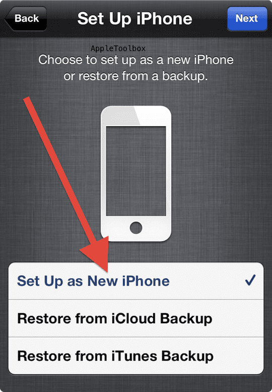 Set up as new device your iPhone