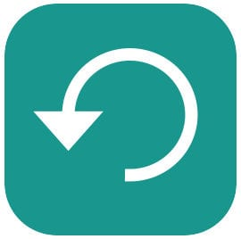 Apple iOS backup icon