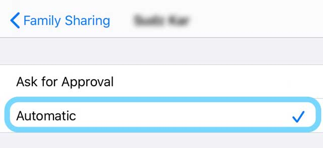 personal hotspot automatic approval for family sharing on iPhone