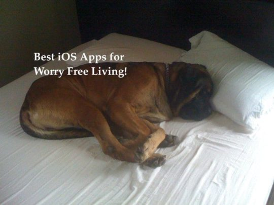 Best iOS apps for worry free iving