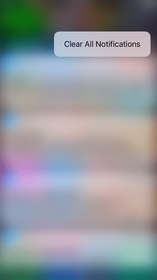 IMG_1028