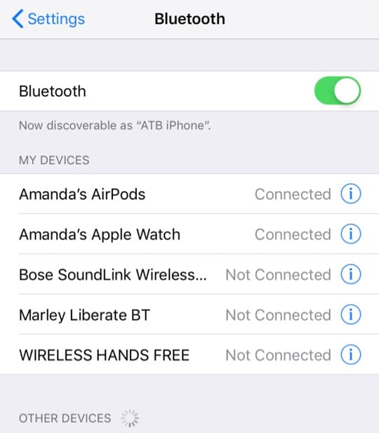 List of Bluetooth Devices iOS 12
