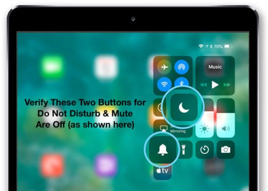 iPad Control Center Mute and Do Not Disturb off setting