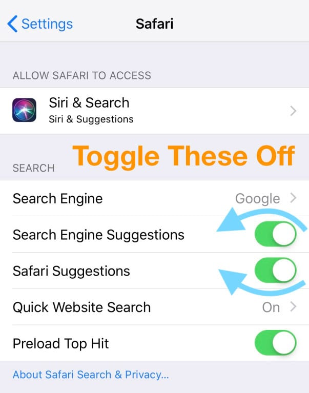 toggle off Safari Suggestions in Settings App iPhone