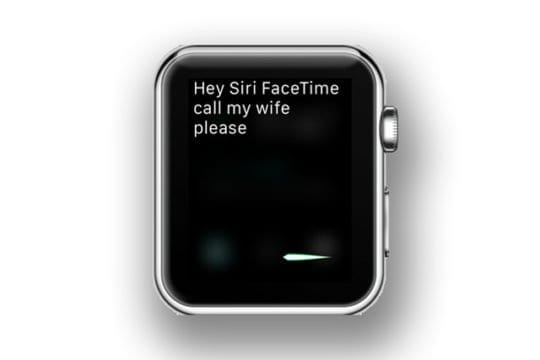 facetime audio call on apple watch