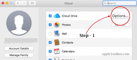 How to Stop iCloud From Syncing Desktop Folders and