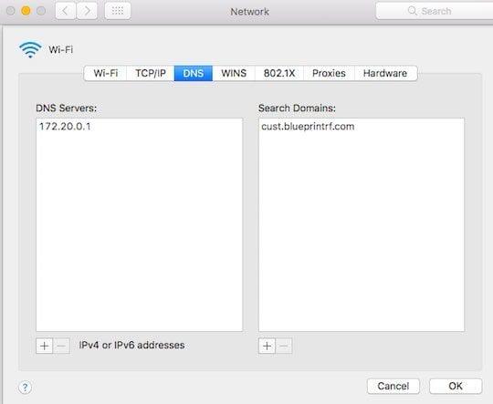 Safari Removing DNS