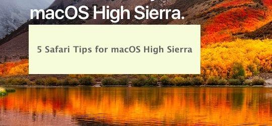 Using Safari on macOS High Sierra