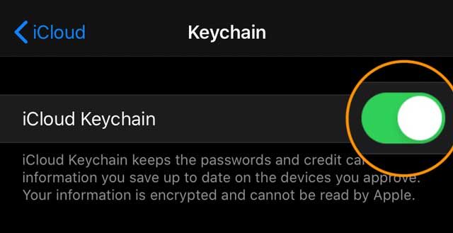 turn on iCloud's keychain for iPhone iPad and iPod