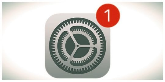 iOS iPhone iPad Update Settings Icon