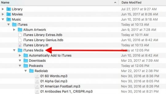 Using iTunes 12.7, Common Tips