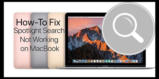 Spotlight Search Not Working on MacBook, Fixes