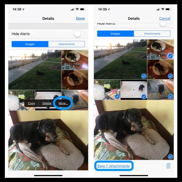 How-To Quickly Save All Images from Text Messages on iPhone