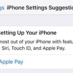 How to Bypass Setting up Apple Pay during iPhone Update