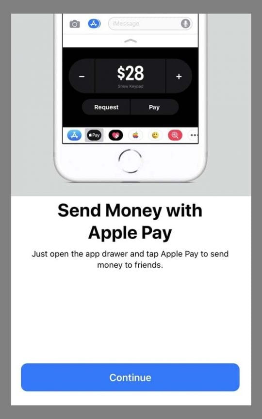 Message App Send Money With Apple Pay