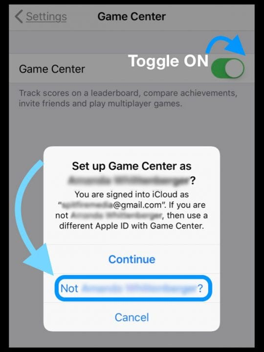 Game Center ID or Apple ID for Game Center in Accounts and Passwords iDevice