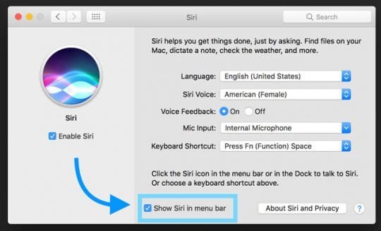 How to Enable Type to Siri in macOS High Sierra