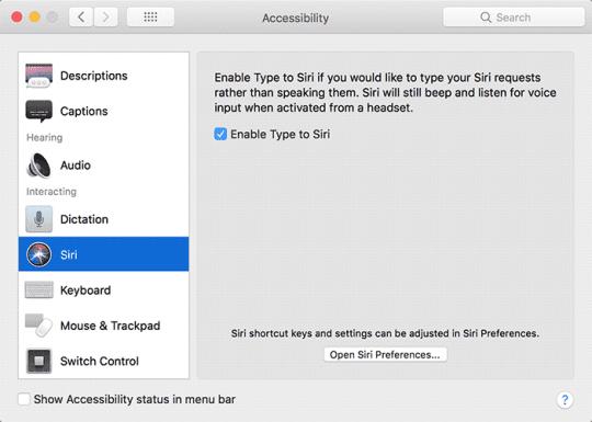 enable type to siri option