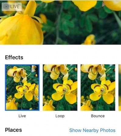 How to Add Effects to Live Photos on iPhone