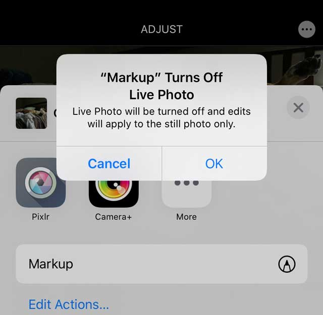 Photos app markup message for Live Photos