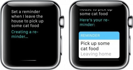 Apple Watch Reminder