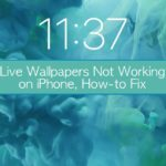 Live Wallpapers Not Working on iPhone, How-to Fix