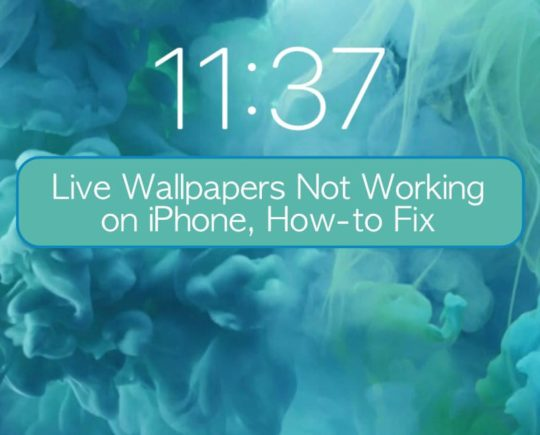 Live Wallpapers Not Working On Iphone Let S Fix It Appletoolbox