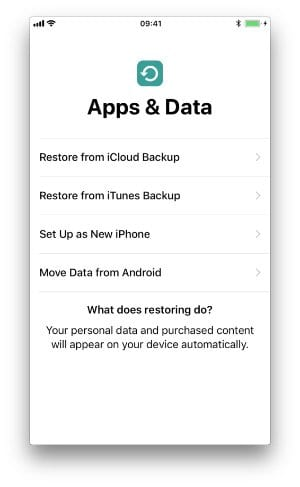 Screenshot from an iPhone setup screen displaying the Backup Recovery Options