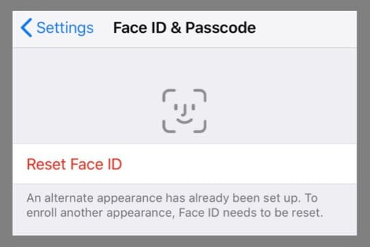 Alternate Appearance has been set up. Reset Face ID
