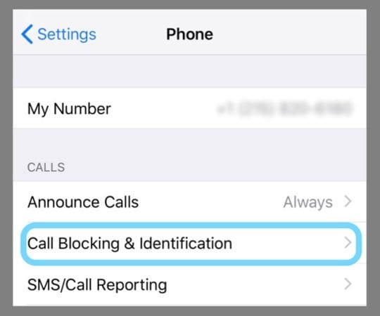 Caller Blocking on iPhone