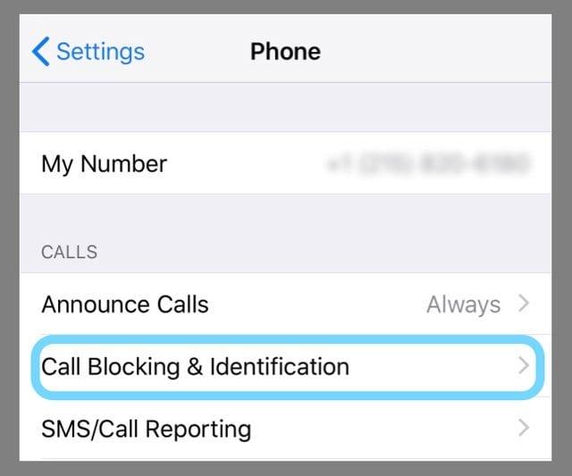 Caller Blocking on iPhone