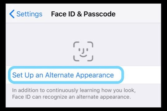 iOS 12 Fan ID Set Up Alternate Appearance