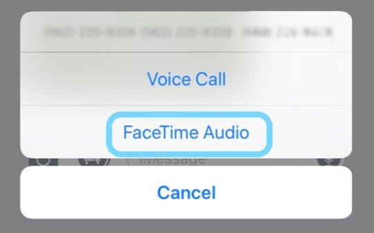Make an Group FaceTime Audio Call