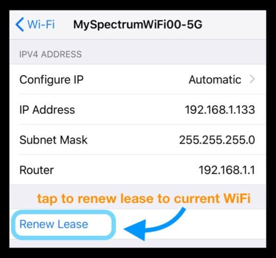 Renew Lease WiFi Settings iPhone
