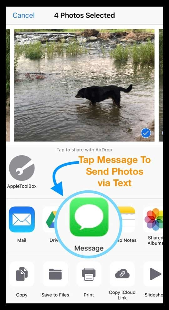 Share Photos in Photos App Using Share Sheet and Messages
