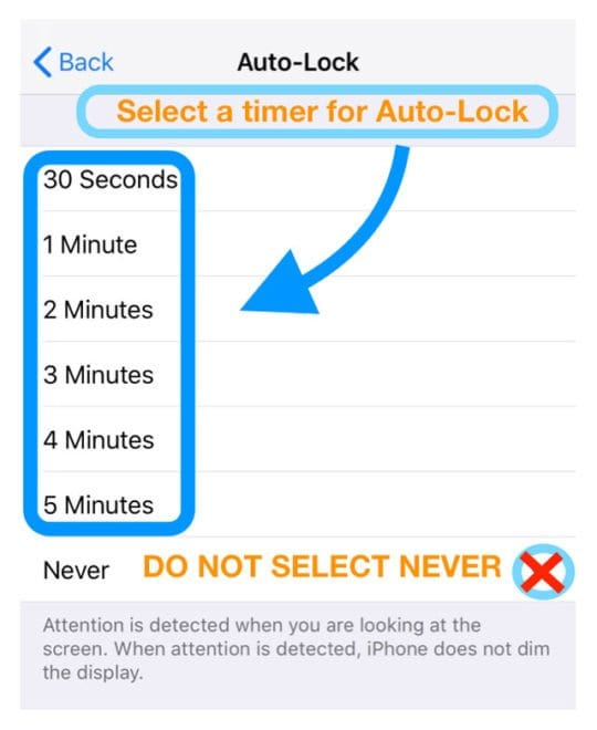 auto-lock settings iPhone iPad