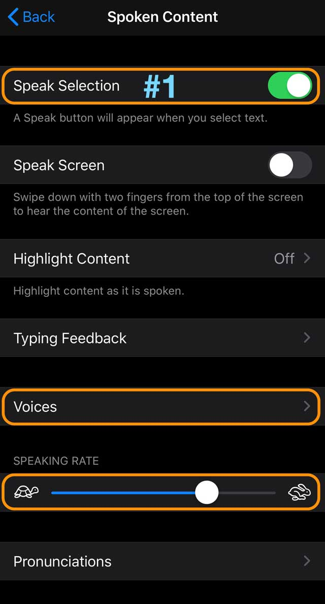 iOS 13 and iPadOS Accessibility Spoken Content settings