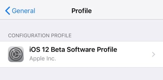 iOS beta installed on new iPhone via general profiles