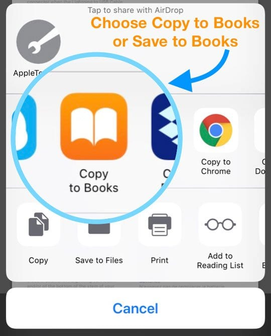 Share Sheet Apple Books Copy to or Save to Books options