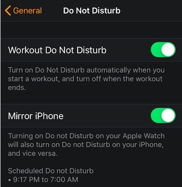 Apple Watch Workout Do not disturb
