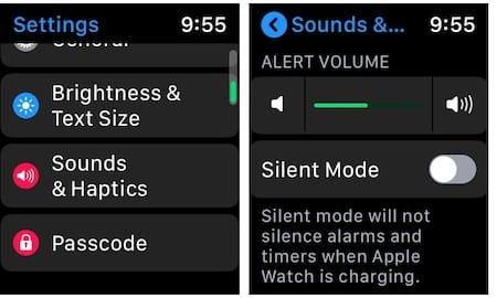 Check Apple Watch Volume