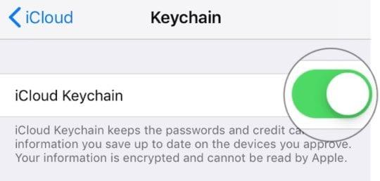 Turn off Keychain on iOS